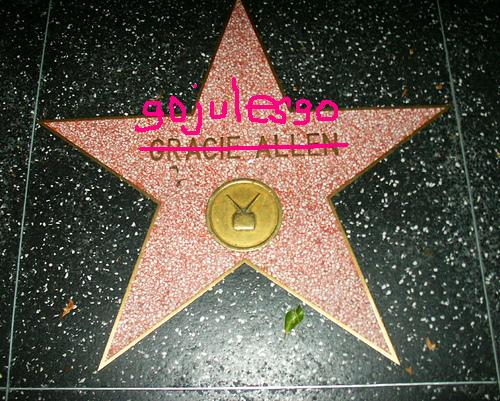 HollywoodStar_gojulesgo