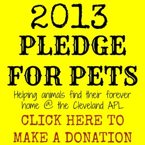 2013-pledge-for-pets-button