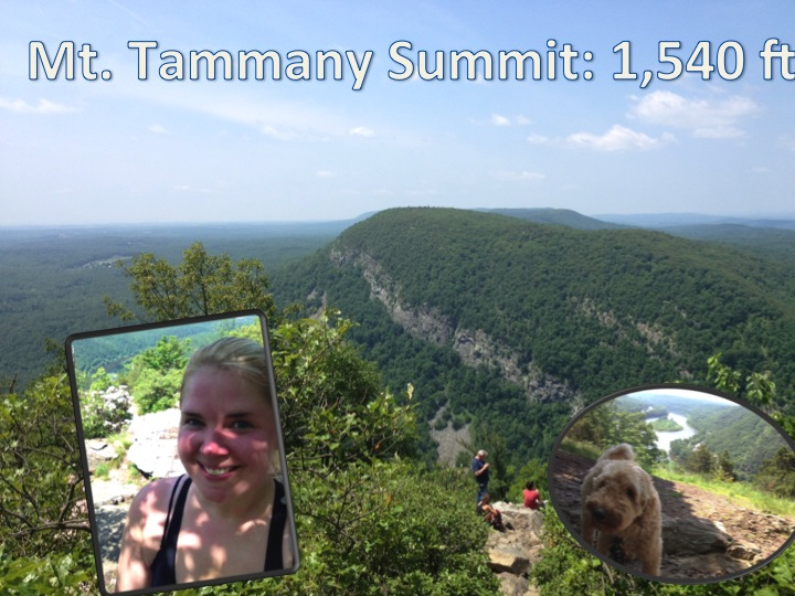 Hike-14-summit