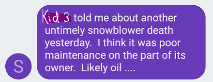 snow blower death