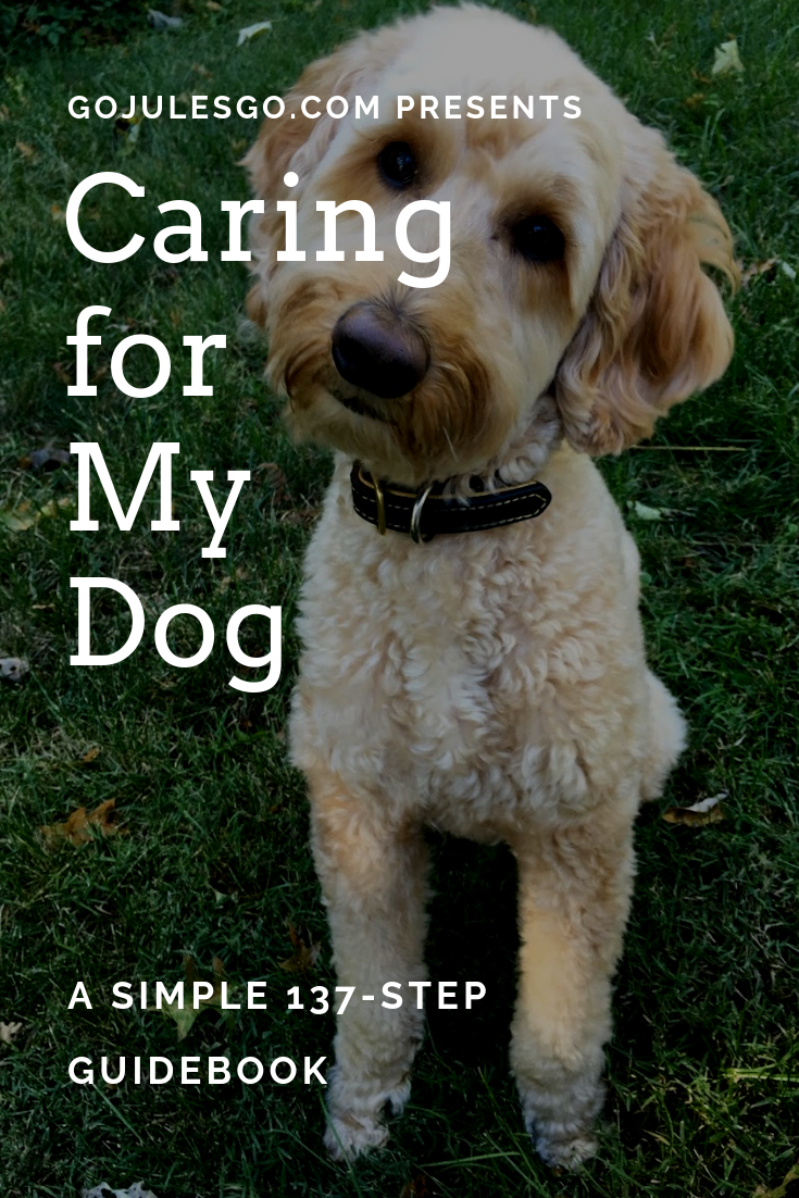 Go-Jules-Go-Caring-for-my-dog-guidebook
