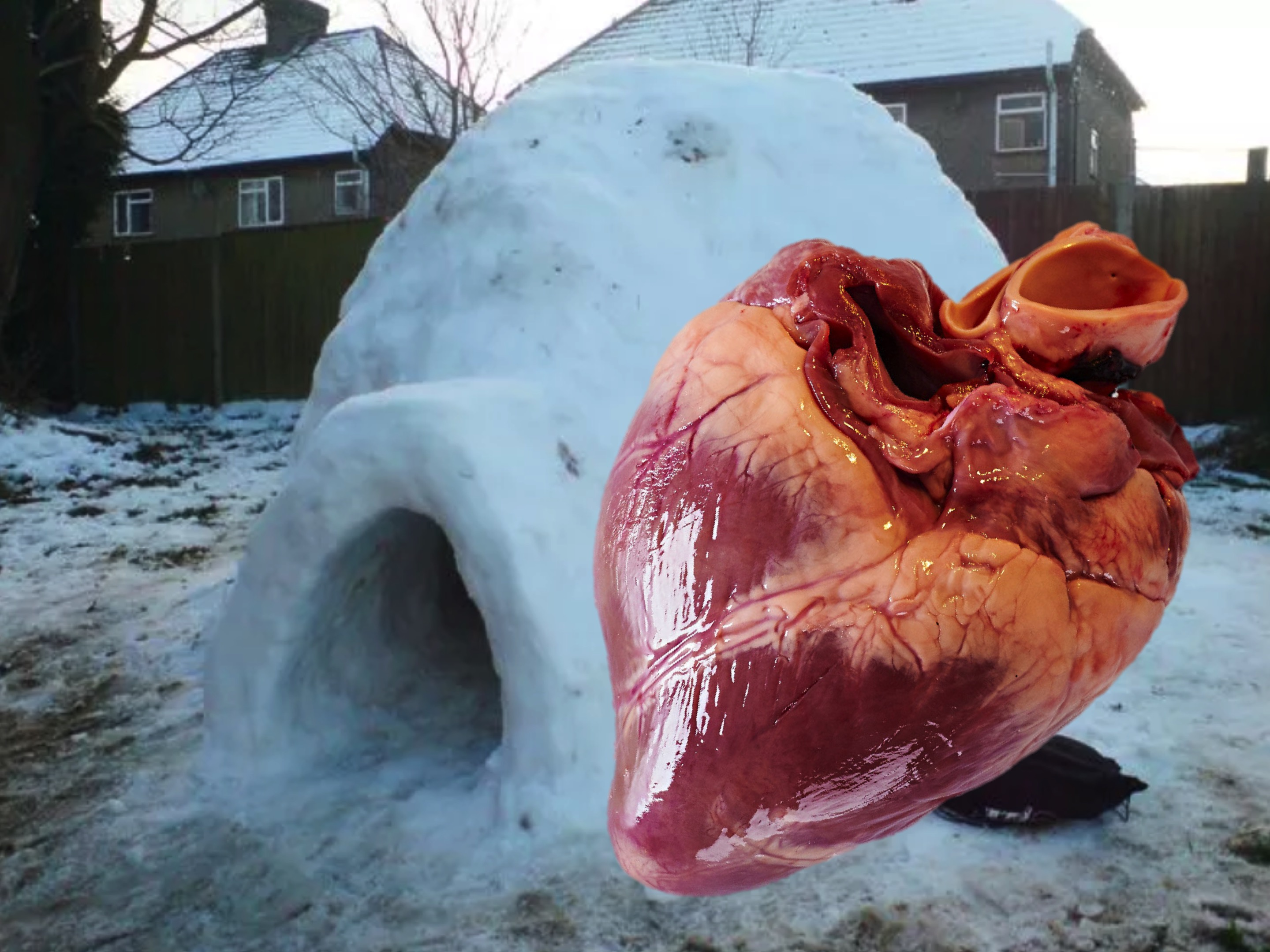 big-heart-igloo