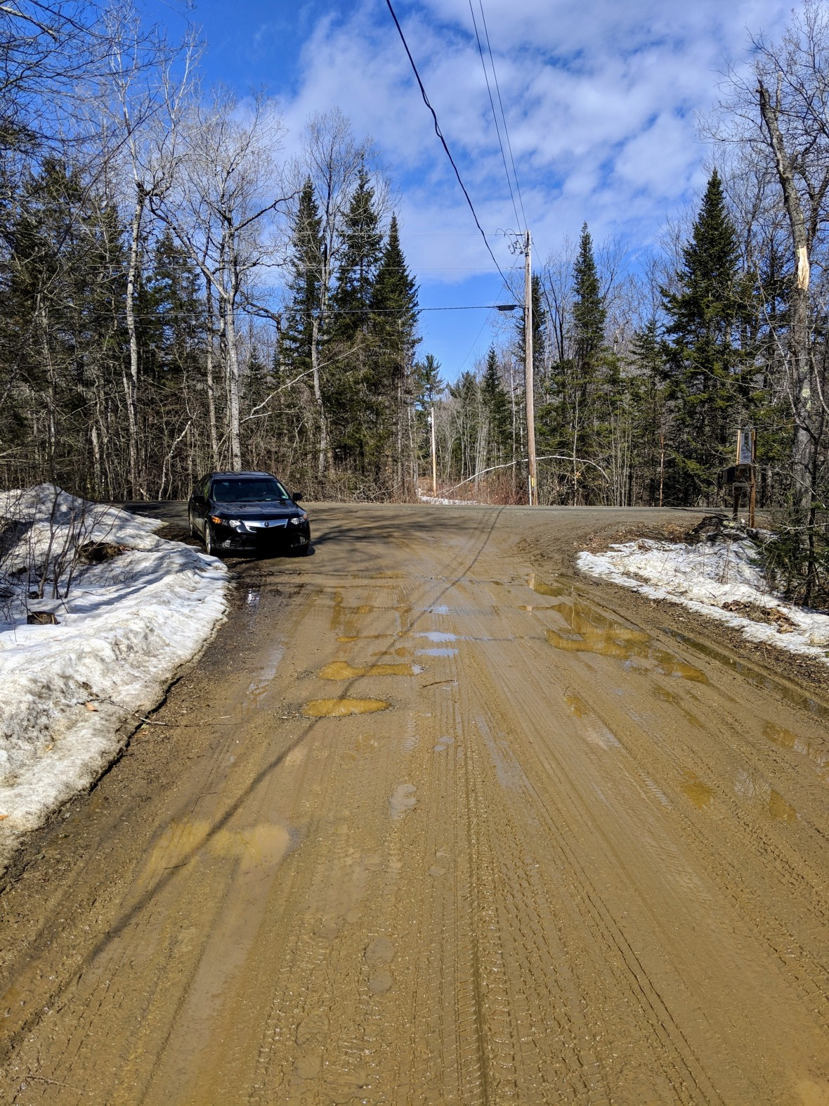 Farm Sanctuary driveway Go Jules Go