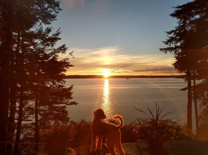 Uncle-Jesse-Maine-sunset