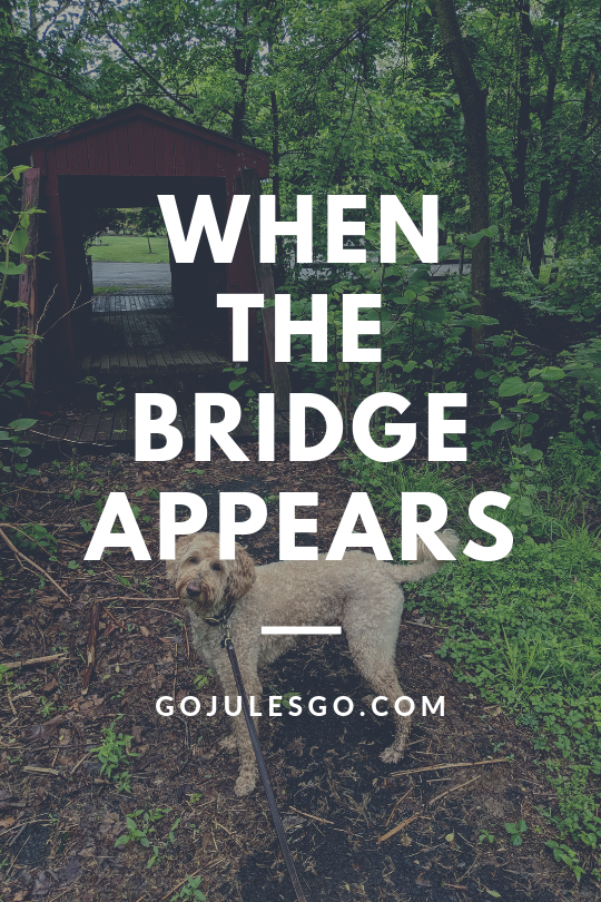 When the Bridge Appears Go Jules go title graphic_15MAY2019