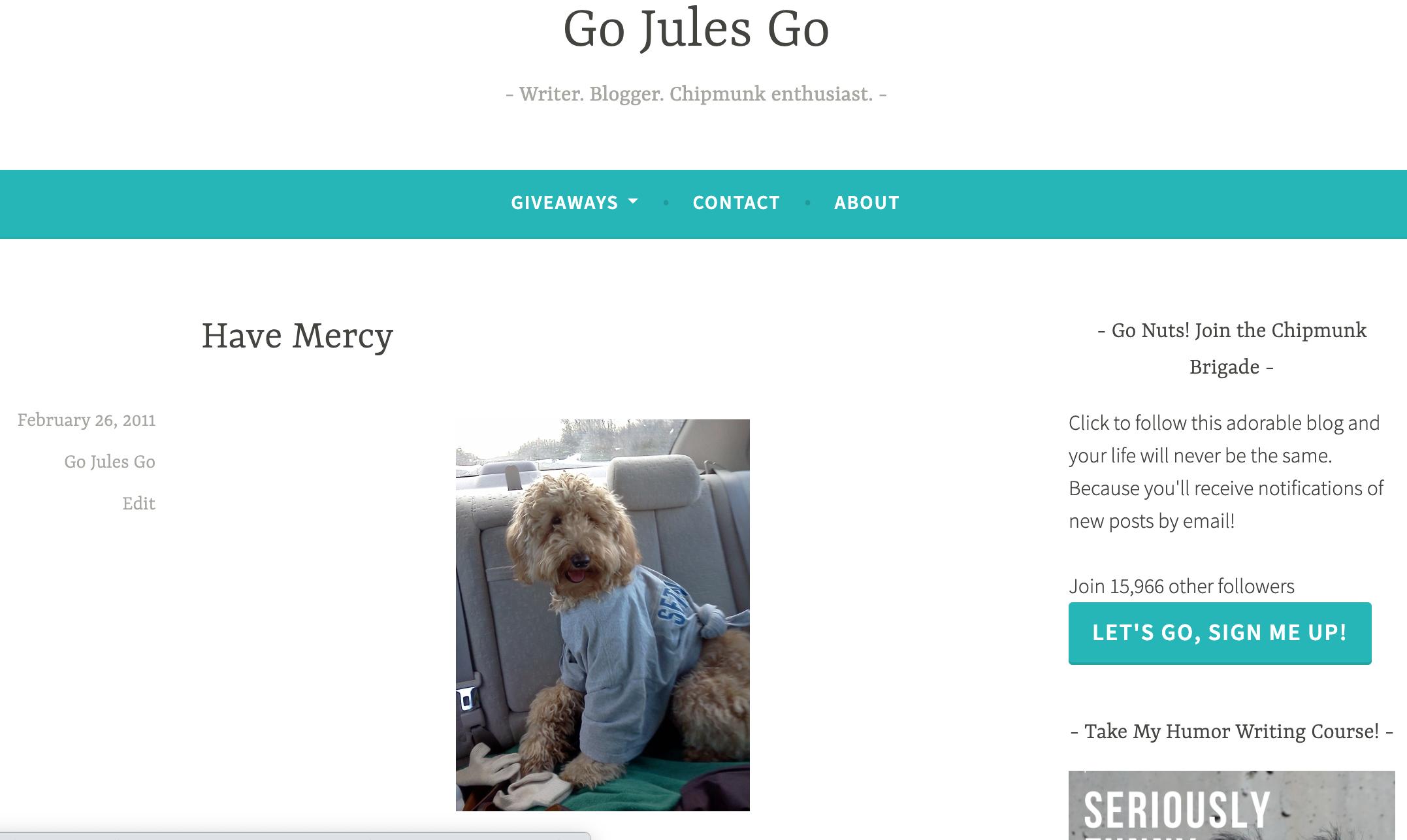 GoJulesGo first blog post